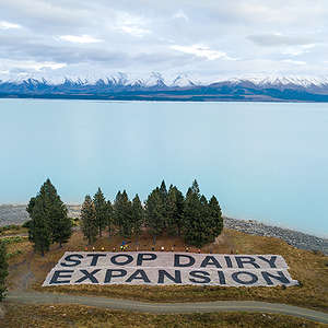 Water Plan a start but Govt must ban dairy expansion
