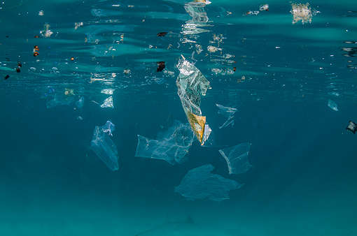 Plastic Pollution in Egypt
