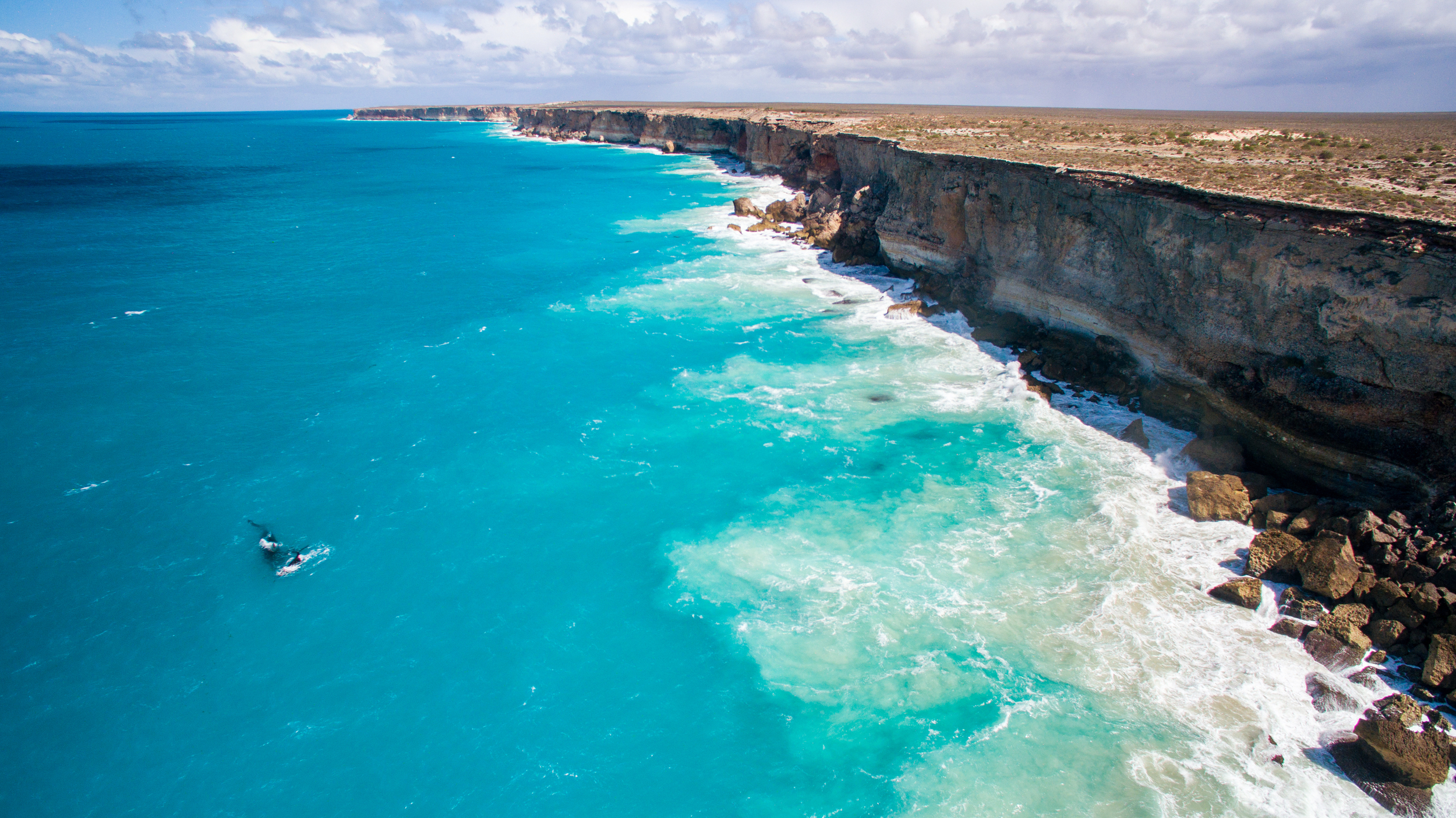 defend the great australian bight from big oil
