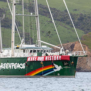 Greenpeace launches trainings to confront oil driller OMV