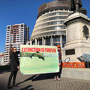 Māui petition names banner delivery