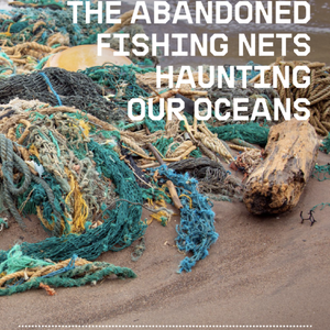 Ghost Gear: The Abandoned Fishing Nets Haunting Our Oceans
