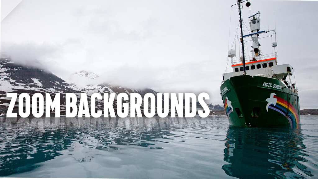 25 Free Zoom Backgrounds For The Coronavirus Lockdown Greenpeace