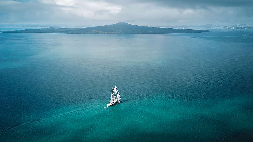 The Rainbow Warrior with Rangitoto in the background Zoom background image  © Greenpeace / Geoff Reid