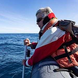 Liz Slooten Marine Mammal Expert, Māui dolphin, Hector's dolphin, dolphins of New Zealand