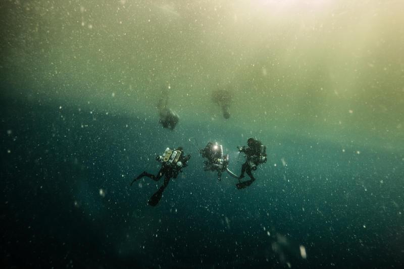 Amazon reef, greenpeace pole to pole, Greenpeace ships, Amazon region, Global Ocean Sanctuary, diving photography