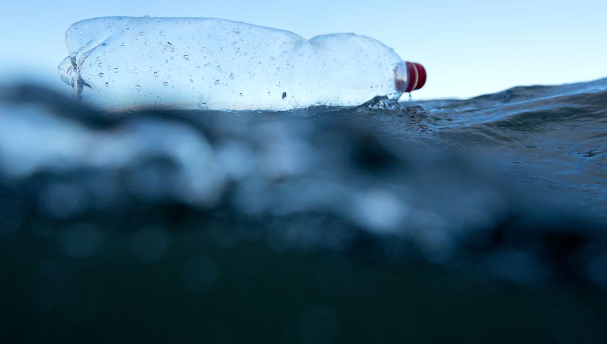 End Pointless Plastic In Aotearoa Greenpeace New Zealand