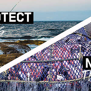 Protect oceans not bottom trawling