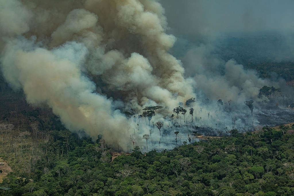 Fires are raging in the Amazon—again