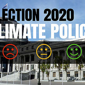Election 2020: What have political parties committed to do about climate change and the environment?
