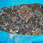 Greenpeace statement on the Australian waste found in Misamis Oriental