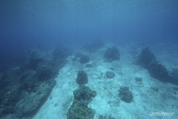 Research at the destroyed marine sanctuary Of Apo Island