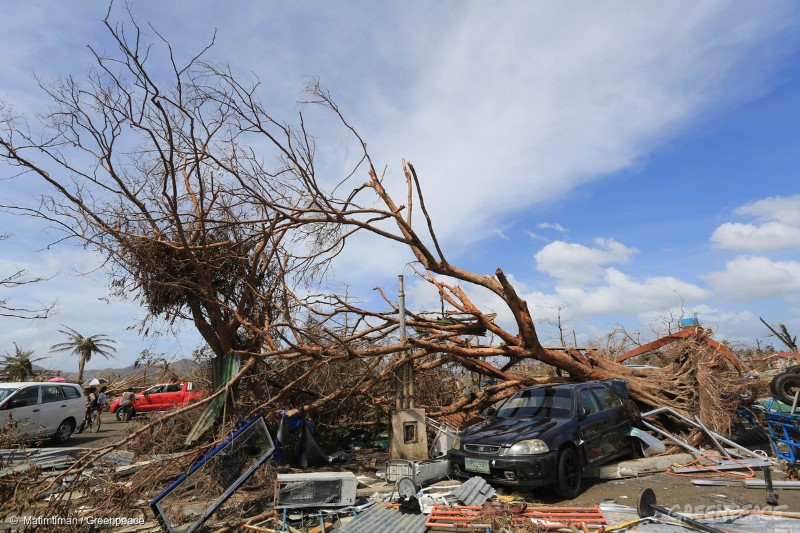 A car is pinned down under a tree in Tacloban City after Typhoon Haiyan made a landfall last Saturday, November 8, 2013 leaving hundreds dead and thousands still missing.