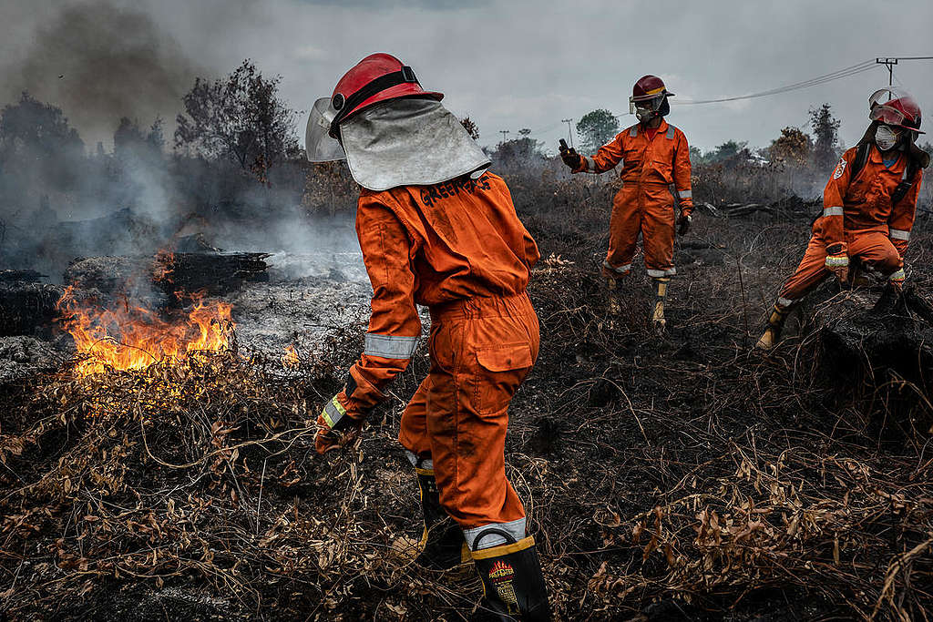 Forest Fires in Tanjung Taruna, Central Kalimantan. © Ulet Ifansasti / Greenpeace