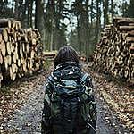 Zamiast ochrony przyrody – interes Lasów Państwowych. Organizacje pozarządowe piszą do premiera ws. ministra środowiska i Puszczy Białowieskiej