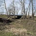 Mieszkańcy Kujaw i Wielkopolski domagają się od kopalni naprawienia szkód