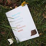 """""""Kadencja nadziei. Co należy wiedzieć, żeby uratować świat"""" – publikacja Greenpeace dla nowych władz"""