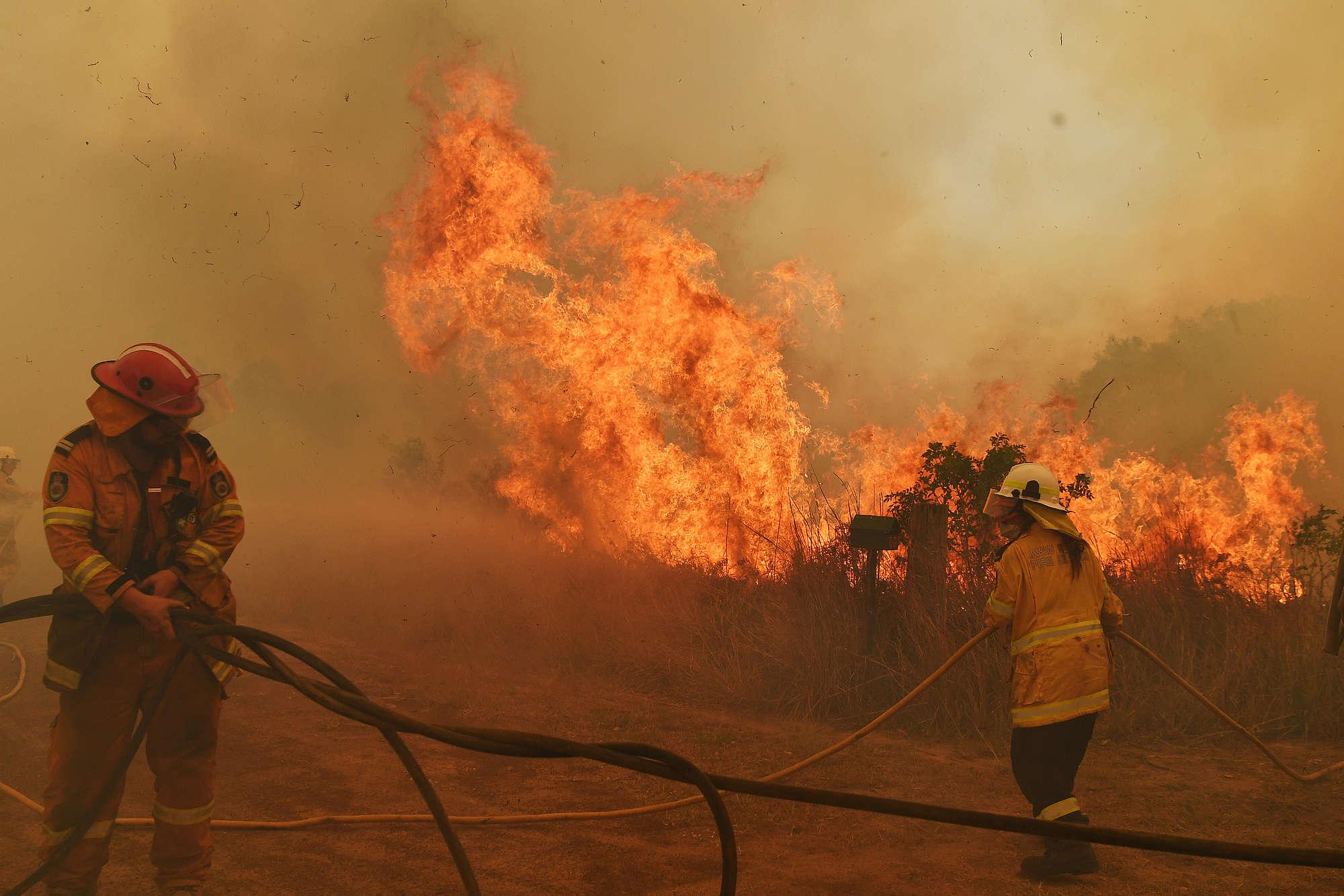 Strażacy walczący z pożarem buszu w Hillville w Australii.