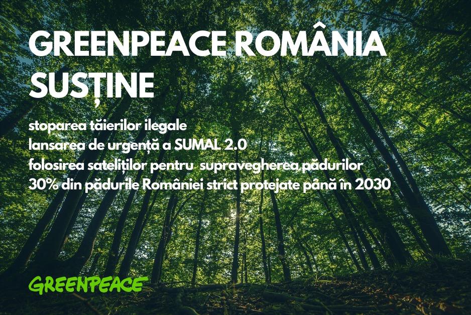 Interzicerea exploatărilor forestiere? — poziția Greenpeace România
