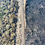Drone still from Fires in Kangaroo Valley. © Byron Ross / Greenpeace