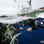Greenpeaceove ladje plujejo v spopad s plastično pošastjo