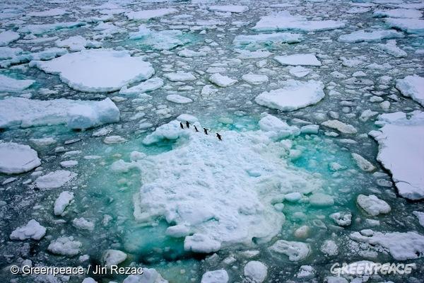 Ledena pokrajina Antarktike