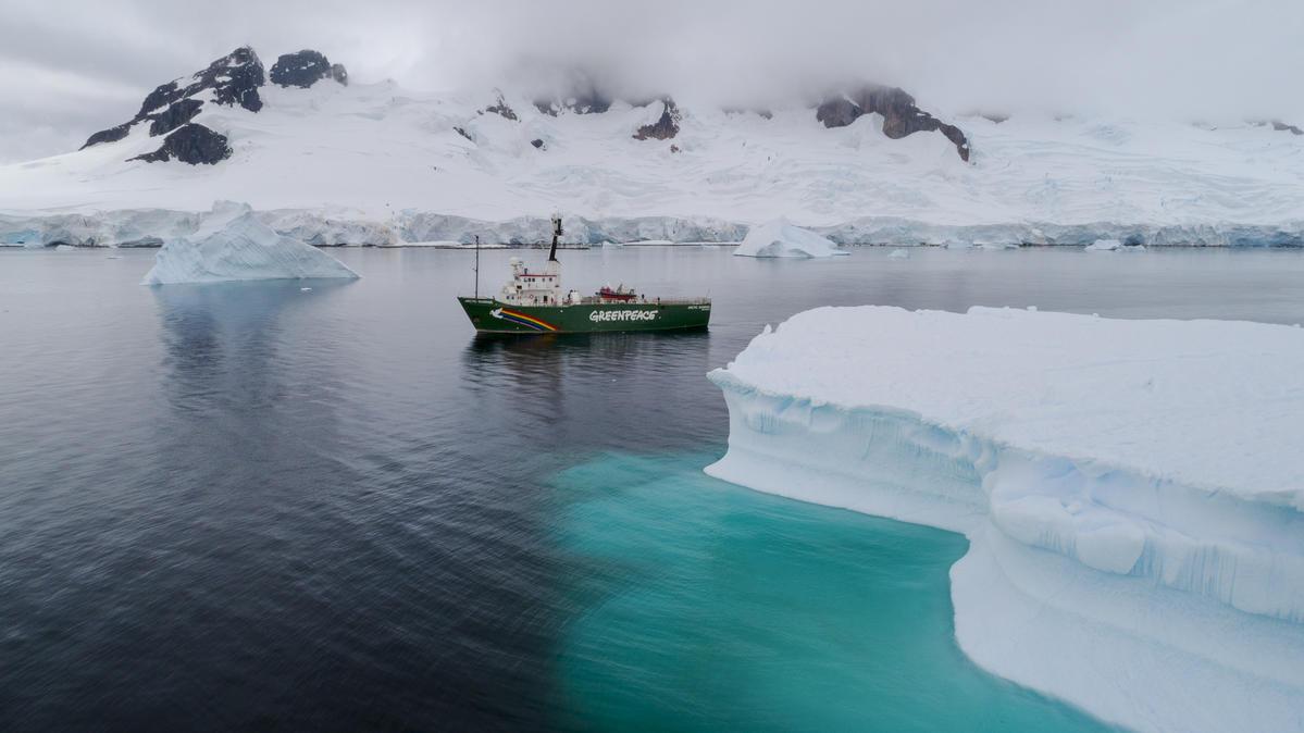 Arctic Sunrise v zalivu Charlotte, Antarktika. © Christian Åslund / Greenpeace