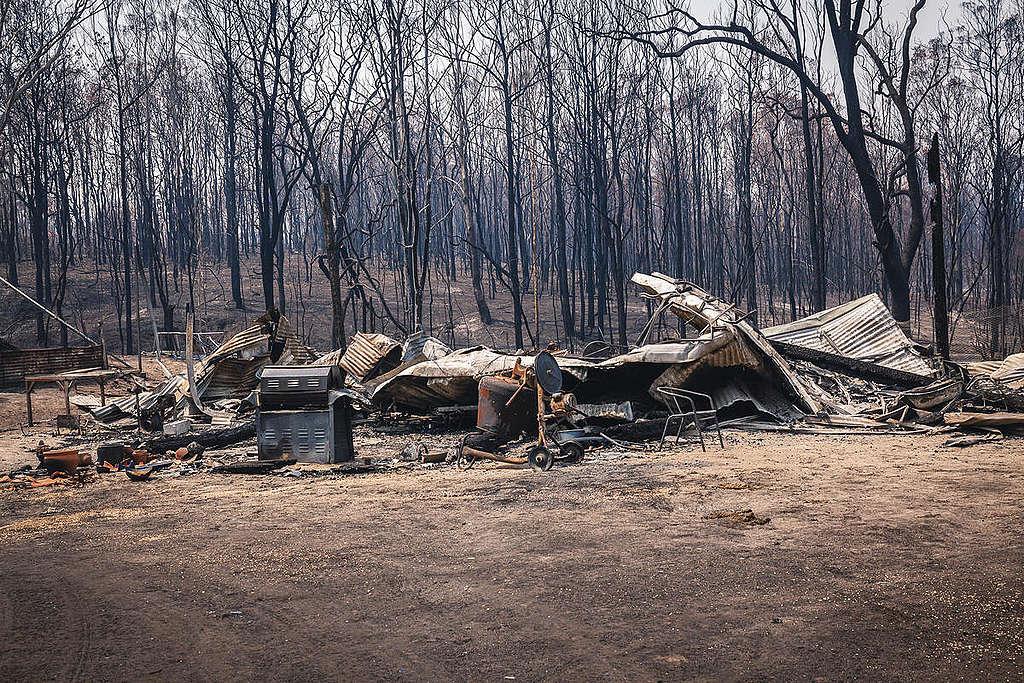 Bushfire Aftermath in Nymboida, New South Wales. © Natasha Ferguson / Greenpeace