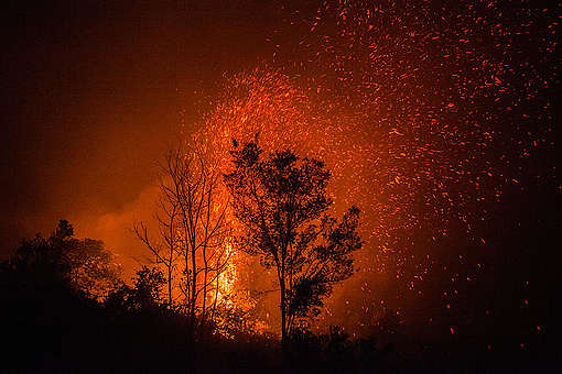 Forest Fires in Central Kalimantan. © Jurnasyanto Sukarno / Greenpeace