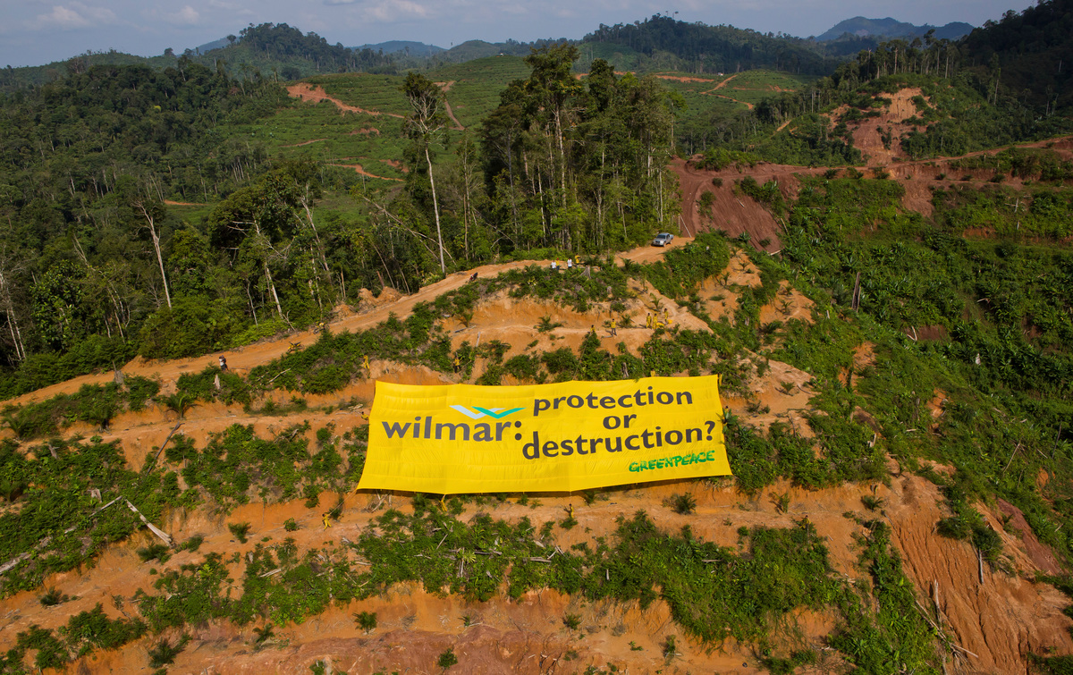 Banner at Wilmar Palm Oil Concession in Sumatraia. © Paul Hilton / Greenpeace