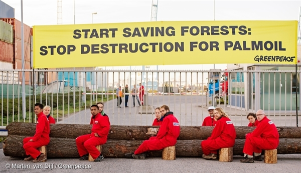 Greenpeace activists close off access for all imports and exports from palm oil trader IOI in the harbour of Rotterdam, palm oil's gateway into Europe.