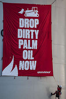 Asia Pulp and Paper awarded Golden Chainsaw - Greenpeace