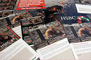 Material for the HSBC Palm Oil Campain. © Angela Glienicke / Greenpeace