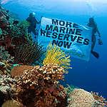 Apo Island Marine Reserve - Philippines 2006. © Greenpeace / Gavin Newman