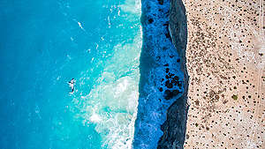 Whales in the Great Australian Bight. © Greenpeace / Jaimen Hudson