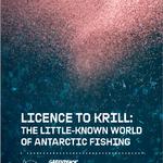 Licence to Krill: det antarktiska fisket som döljs under ytan