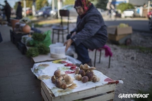 Residents with sales in a local Russian market.  © Denis Sinyakov / Greenpeace