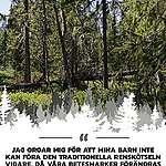 Ny samisk rapport visar kränkningar av urfolk i Sverige