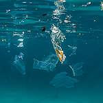 Plastic Pollution in Egypt. © Cherie Bridges