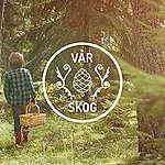 Vår skog – 23 organisationer kräver att statliga Sveaskog tar sitt ansvar och förvaltar skogen hållbart