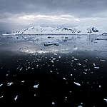 Paradise Bay in the Antarctic. © Paul Hilton / Greenpeace