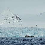 Att se sin framtid smälta bort – tankar från Arktis