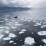Ny IPCC-rapport om haven visar akut behov att agera