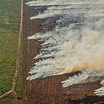 Nya bilder på de illegala bränderna som härjar i Amazonas