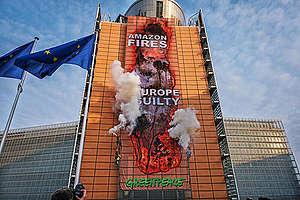 Greenpeace protesterar utanför EU:s högkvarter mot den globala skogsskövlingen.