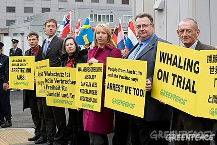 Internationaler Protest in Japan gegen den Walfang