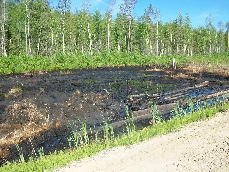 Greenpeace wirft Gazprom vor, Ölpest in Sibirien zu vertuschen