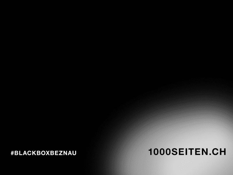 Gesucht: Insider mit Informationen aus der Blackbox Beznau