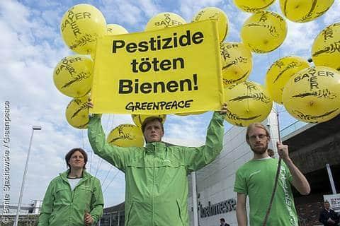 Bayer-Pestizide töten Bienen