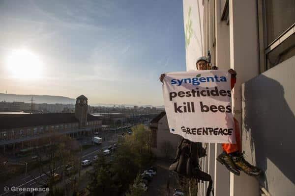 EU-Signal zum Schutz der Bienen